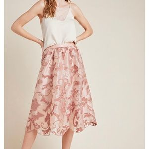 Embroidered Anthropologie Skirt
